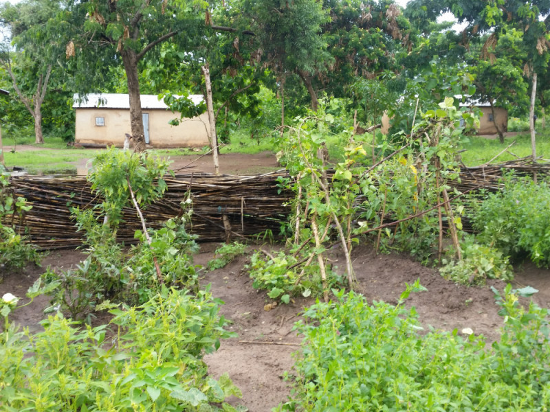 Dieci orti in Benin: una sinergia tra Slow Food e Comune di Bra