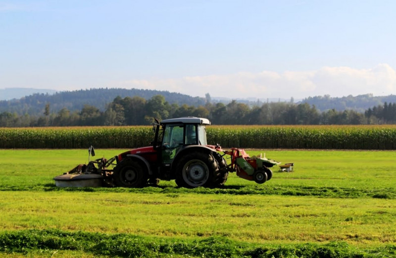 Truffa alla Regione, chiesti due anni e sei mesi per un imprenditore agricolo