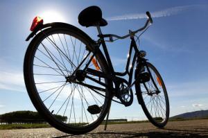 Savigliano, un anno e quattro mesi all'autista di bus che investì un ciclista