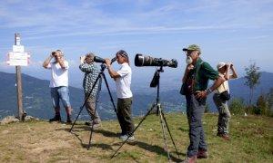 Il Parco del Monviso impegnato da vent'anni nel Progetto Migrans