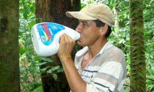 'Bere la candeggina previene il coronavirus': ecco da dove nasce l'incredibile bufala
