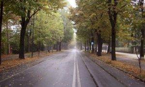 Cuneo, da lunedì pomeriggio Viale degli Angeli sarà area pedonale per due settimane