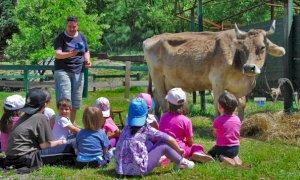 Coldiretti Piemonte: ''Utilizzare le fattorie didattiche per lezioni nella natura''