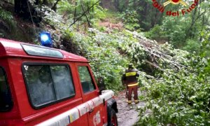 Frane e alberi in strada, i pompieri di Barge al lavoro dopo l'ondata di maltempo
