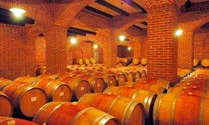 Confagricoltura Piemonte: ''Per il vino giorni decisivi, fare bene e in fretta''