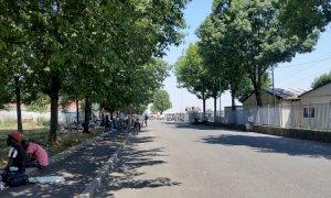 Raccolta frutta, Coldiretti Cuneo: 'Il Saluzzese non è il Far West'
