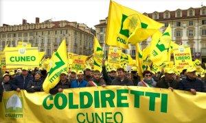Coldiretti Piemonte: 'Bene l'apertura delle frontiere, ora servono i voucher per studenti e pensionati'