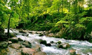 Sabato 13 giugno riapre la riserva di pesca Alta Valle Pesio
