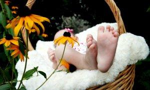'La maternità non si può affittare': appello del Popolo della Famiglia contro la GPA