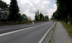 Cuneo, domenica 5 luglio corso Marconi chiuso per un'indagine sullo stato di salute dei cedri