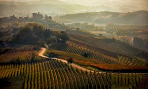 Turismo, Lonely Planet in tour tra Langhe e Roero