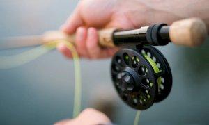 Cambia il sistema di pagamento della licenza di pesca