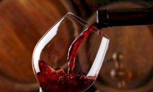 'Servono interventi straordinari ad hoc per il settore vitivinicolo del nostro territorio'