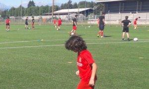 'Il ragazzo sarà svincolato: non farà più parte della Monregale Calcio'