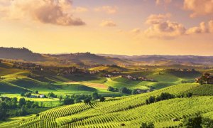 'Senza turisti americani il Made in Piemonte è a rischio'