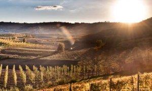 Come cambia il clima: dai rapporti di Arpa e Regione emerge un Piemonte sempre più caldo