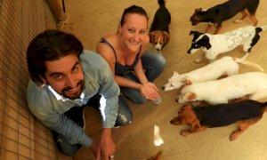 Non bomboniere, ma amore per gli animali: promessi sposi devolvono i soldi ad un canile