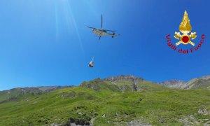 In elicottero per salvare una mucca: le operazioni di soccorso a Bellino
