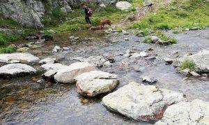 Lavori di manutenzione sugli attraversamenti dei corsi d'acqua nel Parco Alpi Marittime