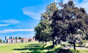 Cuneo, il parco urbano in piazza d'Armi sarà pronto nel 2022. Borgna: ''È il cantiere più grande d'Italia''