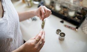 'Centomila persone in Italia coltivano cannabis in casa per non finanziare le mafie'