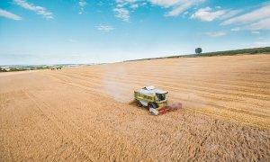 Agricoltura, la Lega esulta: 'Successo del mediocredito grazie al nostro lavoro in parlamento'