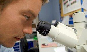 La scoperta dell'Università di Torino: una molecola derivata dal colesterolo può bloccare il coronavirus