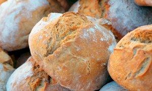I panificatori replicano sul prezzo del pane (15 volte superiore a quello del grano): ''Abbiamo tanti costi''