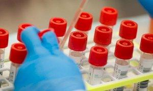 Coronavirus, 60 nuovi casi registrati in Piemonte nelle ultime 24 ore