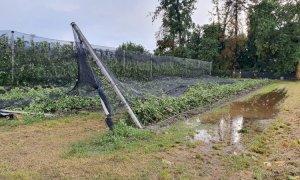 Coldiretti Cuneo: 'Agricoltura k.o. dopo un'estate dal meteo imprevedibile'