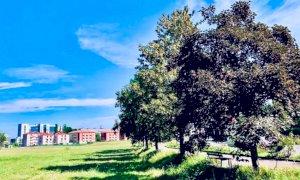Cuneo, lunedì partono i lavori di riqualificazione in piazza d'Armi