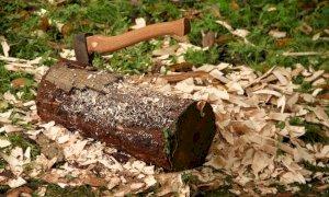 Lanciò un tronco ai carabinieri che lo avevano fermato per droga: condannato un roccavionese