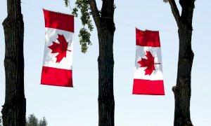 Dopo l'accordo Ceta raddoppiano le importazioni di prodotti alimentari canadesi In Italia