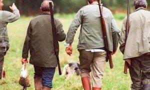 È iniziata la stagione di caccia 2020-2021