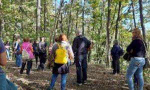 Busca, domenica di nuovo la grande passeggiata nel bosco del Roccolo