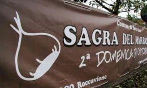 Roccavione, cancellata l'edizione 2020 della Sagra del Marrone