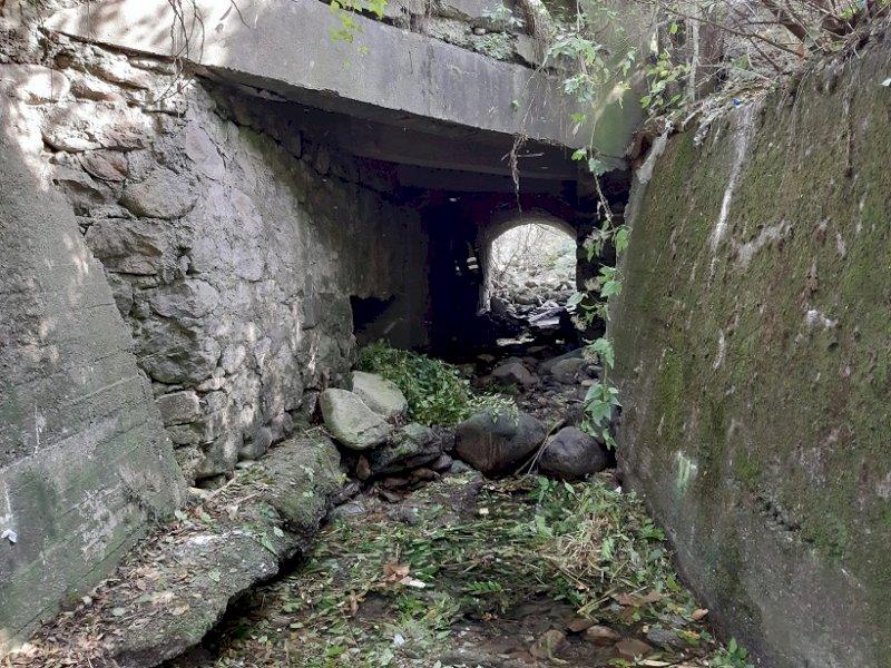 Vernante, rimossi rifiuti abbandonati in un rio in località Teit Salet