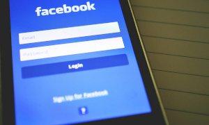 Animalisti in lite per una pagina Facebook, a processo un collaboratore di Striscia