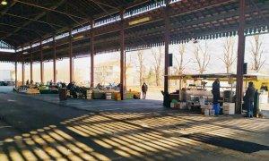 Alba, il mercato del sabato da questa settimana sarà collocato in piazza Prunotto