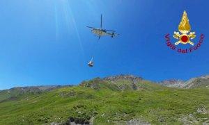 Le carcasse di 16 bovini recuperate dal Soccorso Alpino in alta valle Grana