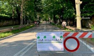 'Solo in via Bersezio il traffico è peggiorato dopo la pedonalizzazione di viale Angeli'