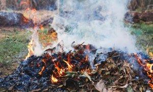 Deroga al divieto di abbruciamento di materiale vegetale a Busca e Chiusa Pesio