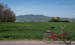 Fondo per la ristorazione, in Piemonte interessate anche 800 imprese agrituristiche