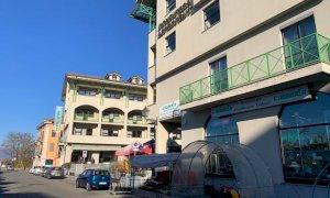 Coldiretti Cuneo tiene il punto: ''Subito misure straordinarie contro l'emergenza cinghiali''