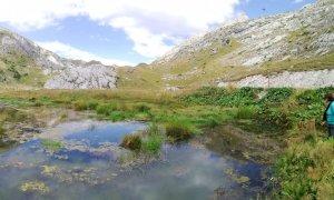 Salvato un prezioso habitat in alta valle Tanaro