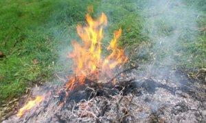 Saluzzo, il Comune fissa due 'finestre' per bruciare gli scarti vegetali