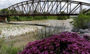 Borgo San Dalmazzo, via libera della Provincia per lavori di sistemazione del 'ponte di ferro'