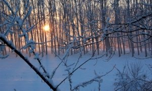 Arpa Piemonte dichiara l'allerta gialla per le nevicate delle prossime ore