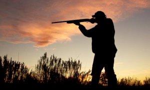 Riprende la caccia anche fuori dal proprio Comune di residenza: la soddisfazione di Coldiretti