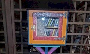 Una cassetta per il 'book crossing' di fronte alla ferramenta Chialva di San Chiaffredo